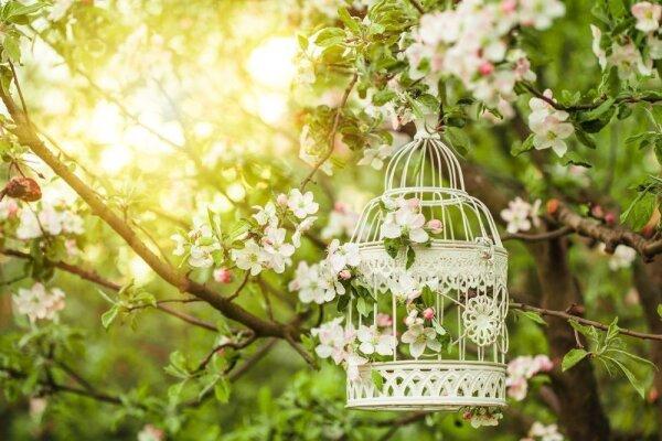 Romantische Gartendeko - Romantische Gartendeko - Ideen & Tipps