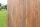Tischplatte Mixedwood 5 cm Dingklik 5 Größen